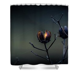 Spark Of Hope Shower Curtain