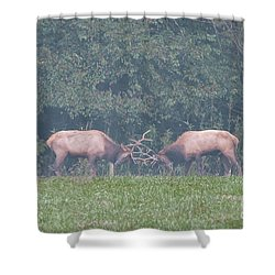 Sparking Elk On A Foggy Morning - 1957 Shower Curtain