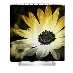 Sparkle Daisies Shower Curtain