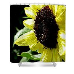 Sparkle Sunflower Shower Curtain