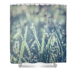Sparklets Shower Curtain