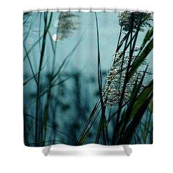 Sparkling Lights Shower Curtain by Susanne Van Hulst