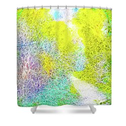 Shower Curtain featuring the digital art Sparkling Pathway - Trail In Santa Monica Mountains by Joel Bruce Wallach