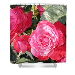 Sparkling Roses Shower Curtain by Carol Groenen