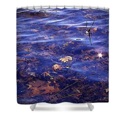 Sparkling Shore Shower Curtain by Cedric Hampton