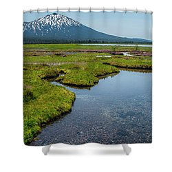 Sparks Spring Bloom  Shower Curtain