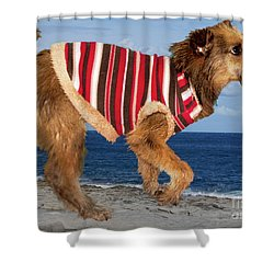 Sparky Shower Curtain by Al Bourassa