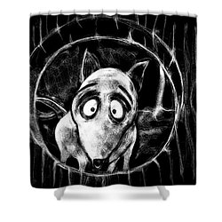 Sparky Shower Curtain