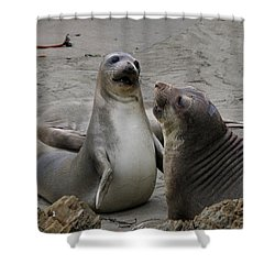Sparring Seals  Shower Curtain