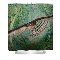 Sparrowhawk Hunting Shower Curtain