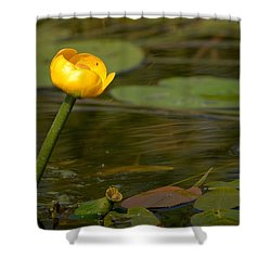 Shower Curtain featuring the photograph Spatterdock by Jouko Lehto