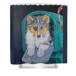 Special Delivery Shower Curtain by Wendy Shoults
