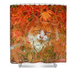Special Kitty Shower Curtain by Geraldine DeBoer