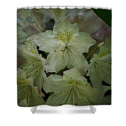 Shower Curtain featuring the photograph Speckled In Gold by Ramona Whiteaker