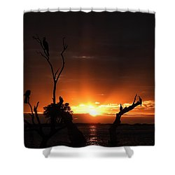 Spectacular Sunset Shower Curtain