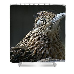 Shower Curtain featuring the photograph Speed Demon by Fraida Gutovich