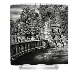 Shower Curtain featuring the photograph Speedwell Swirls by Eduard Moldoveanu