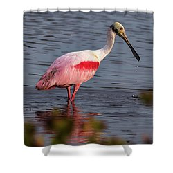 Spoonbill Fishing Shower Curtain