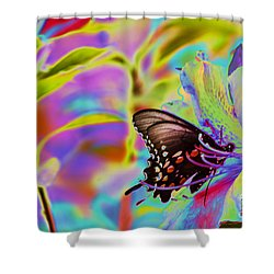 Spicebush Swallowtail Butterfly Solorize Shower Curtain by Donna Brown