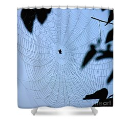 Spider In Web Shower Curtain