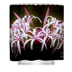 Spider Lilly Shower Curtain