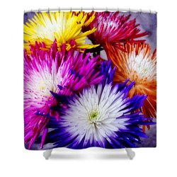 Spider Mums Shower Curtain by Joan Bertucci
