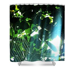 Shower Curtain featuring the photograph Spider Phenomena by Megan Dirsa-DuBois