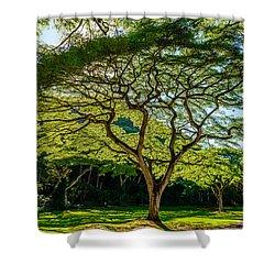 Spider Tree Shower Curtain