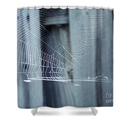 Shower Curtain featuring the photograph Spider Web by Megan Dirsa-DuBois