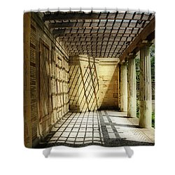 Spider's Den Shower Curtain
