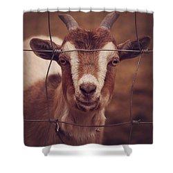 Spike Shower Curtain