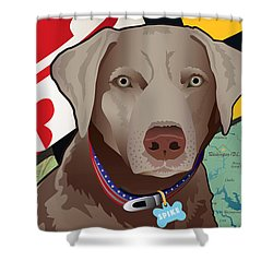 Spike, The Maryland Silver Lab Shower Curtain