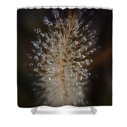 Spiked Droplets  Shower Curtain