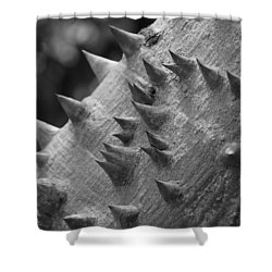 Spikey Thorny Tree Shower Curtain by Rob Hans