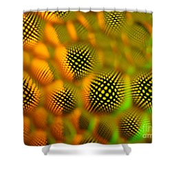 Spikey Shower Curtain by Trena Mara