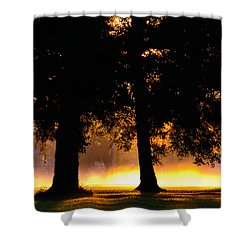 Shower Curtain featuring the photograph Spilled Suinshine by Tikvah's Hope