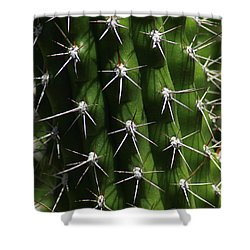 Spine Field Shower Curtain