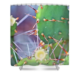 Spines Prickly Pear Cactus Shower Curtain by D Renee Wilson