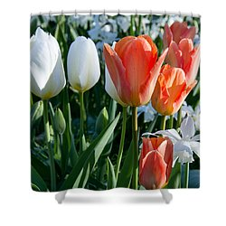 Sping Flowerbed Shower Curtain