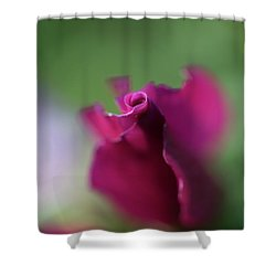 Spinning With Rose 2 Shower Curtain