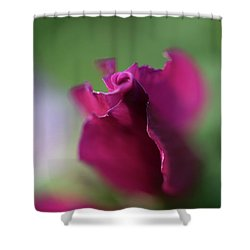 Spinning With Rose Shower Curtain