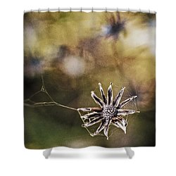 Spinnumwobner Bluetenstand Shower Curtain