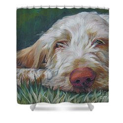 Spinone Italiano Orange Shower Curtain by Lee Ann Shepard