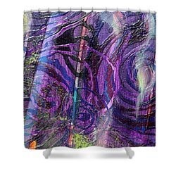 Spiral Detail From Annunciation Shower Curtain