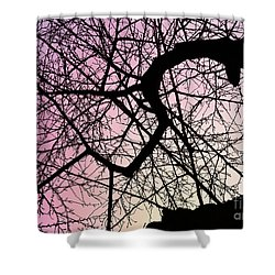 Spiral Tree Shower Curtain