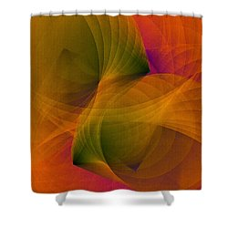 Spiraling Insight With Complicated Continuation Shower Curtain