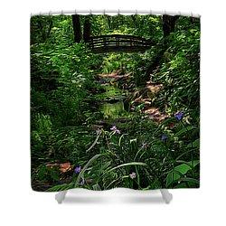 Spirit Bridge 2 Shower Curtain by William Horden