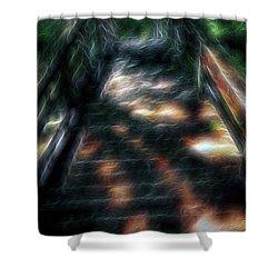 Spirit Bridge Shower Curtain by William Horden