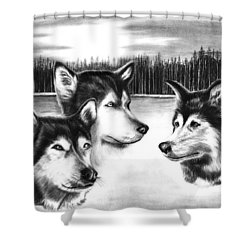 Spirit Guides  Shower Curtain by Peter Piatt