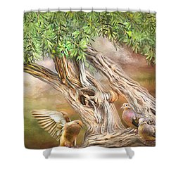 Shower Curtain featuring the mixed media Spirit In The Olive Tree by Carol Cavalaris